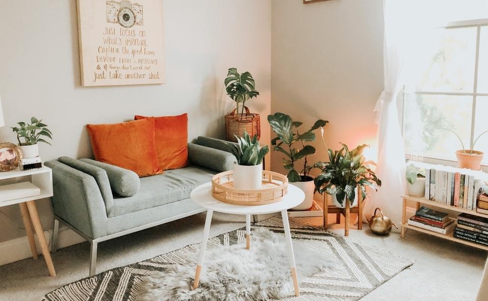 Las plantas son un básico para la decoración del hogar