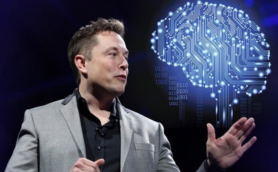 Elon 4